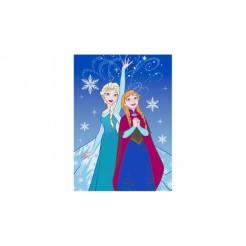 Disney Frozen Speelkleed Anna en Elsa IJskristal 95x133cm