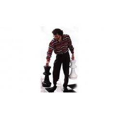 Rolly Toys 218707 Grote Buiten Schaakstukken 64 cm